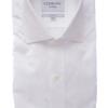 ledbury shirt white